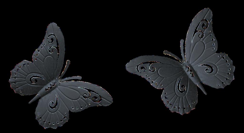 butterfly-3101972_1920